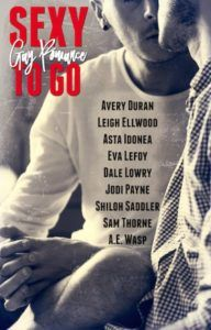 Sexy to Go Gay Romance book cover