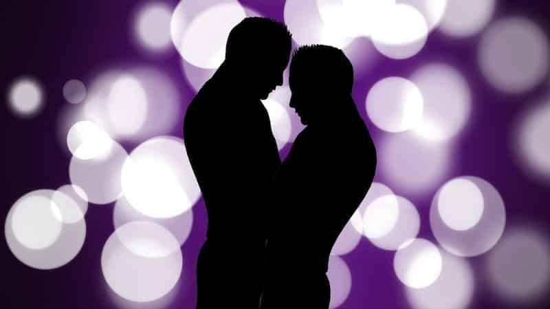 silhouette of gay couple against sparkly purle background